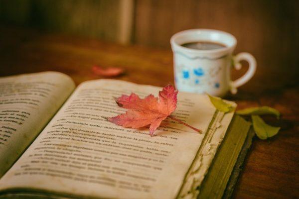 読書が好き 読書術 本を読む